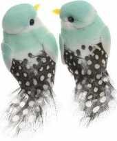 2x licht mintgroene vogels versiering 6 cm met verenstaart op draad kerstversiering